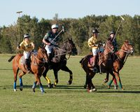 Polo chez Diamond Polo Club noir Image libre de droits