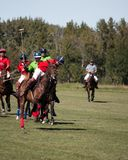 Polo chez Diamond Polo Club noir Photo stock