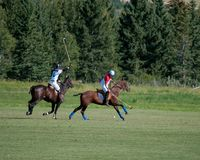 Polo chez Diamond Polo Club noir Images libres de droits
