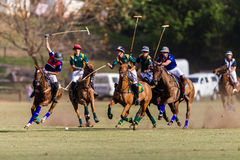 Polo Riders Game Action Stock Photo