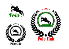 Polo club design with player and rearing up horse Royalty Free Stock Photos