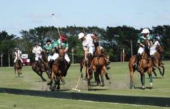 Polo Club - Wellington internacionales, la Florida - Joe Fotografía de archivo