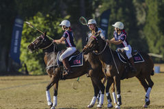 Polo-Cross Players Horses Stock Photos
