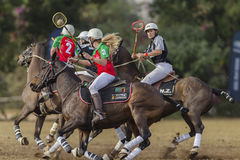 Polo-Cross Women Riders Action stock photo