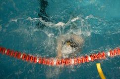 Polo d'eau Images libres de droits