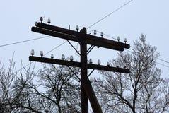 Polo de madeira cinzento velho e fios elétricos contra o céu foto de stock royalty free