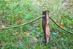 Polo de madeira conectado Imagens de Stock Royalty Free