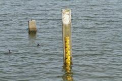 Polo do nível de água Imagens de Stock