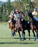 Polo en Diamond Polo Club negro Foto de archivo libre de regalías