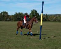 Polo en Diamond Polo Club negro Fotografía de archivo libre de regalías