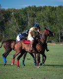 Polo en Diamond Polo Club negro Fotos de archivo