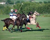 Polo en Diamond Polo Club negro Foto de archivo