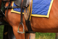 Polo equipment. Saddle and stirrup. Royalty Free Stock Photos