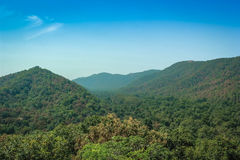 Polo forest hill view. Green hill of polo forest, India Stock Photography