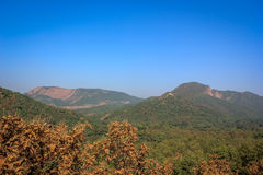 Polo forest hill view. Green hill of polo forest, India Royalty Free Stock Photos