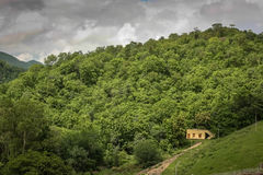 Polo forest hill view. Green hill of polo forest, India Stock Images