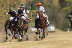 Polo Game Action Image libre de droits