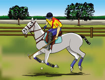 Polo game. Cartoon style illustration: a player riding his horse in a Polo game Royalty Free Stock Photography