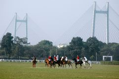 Polo Game of Kolkata-India Royalty Free Stock Photography