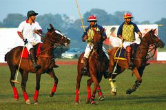 Polo Game of Kolkata-India Stock Photography