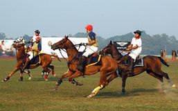 Polo Game of Kolkata-India Royalty Free Stock Image