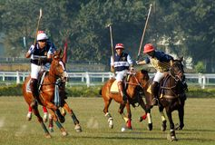 Polo Game of Kolkata-India Royalty Free Stock Photos