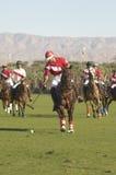 Polo gracze Bawić się dopasowanie Zdjęcia Royalty Free