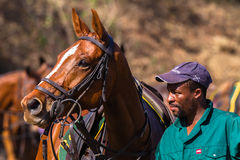 Polo Grounds Groom Horse Shongweni Hillcrest Image libre de droits