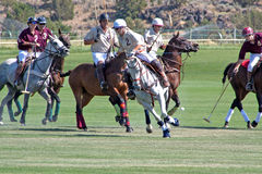Polo On The High Desert In Oregon. Polo players in the Chukkers for Charity polo match in Bend, Oregon Stock Photography