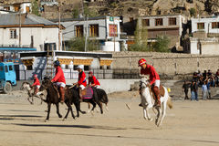 Polo in the Himalayas Royalty Free Stock Photography