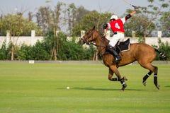Polo Horse Sport Player che per mezzo di un maglio Fotografia Stock