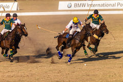 Polo jeźdzów koni sztuki akcja Obrazy Royalty Free
