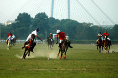 POLO in Kolkata Royalty-vrije Stock Foto
