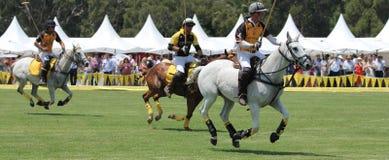 Polo konie i gracze Zdjęcia Royalty Free