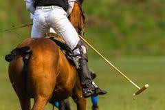 Polo konika gracza akcja Fotografia Royalty Free