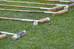 Polo mallets. Lying in the grass Stock Photos
