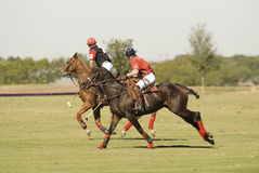 Polo Match. A polo match in Texas Stock Images