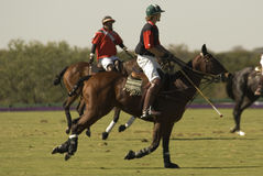Polo Match. A polo match in Texas stock photography