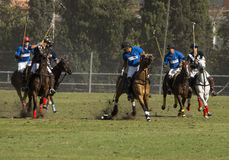 Polo Match Photo stock