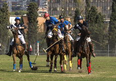 Polo Match Stockbild