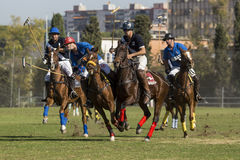 Polo Match Royalty-vrije Stock Afbeelding