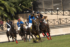 Polo Match Photographie stock libre de droits