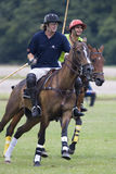 Polo match. Action shot of a polo match in progress, the netherlands Royalty Free Stock Images
