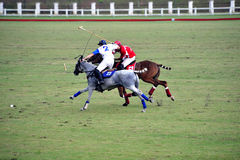 Polo Match Royalty Free Stock Photos