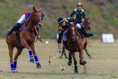 Polo Match Chasing Ball Balance stock foto