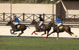 POLO MATCH Royalty Free Stock Images