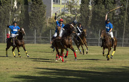 POLO MATCH Royalty Free Stock Photo