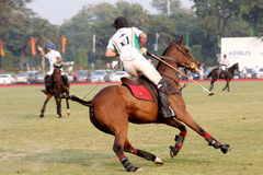 POLO MATCH AT JAIPUR POLO GROUND, NEW DELHI. Two players disputing the ball in a polo match. It's a team sport played on horseback. The objective is to score Royalty Free Stock Image
