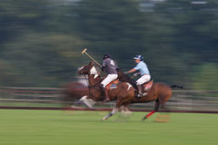 Polo Match. Panning shot of fast moving horses and riders at a Polo match Stock Photos