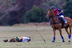 Polo Match Rider Down royalty-vrije stock foto